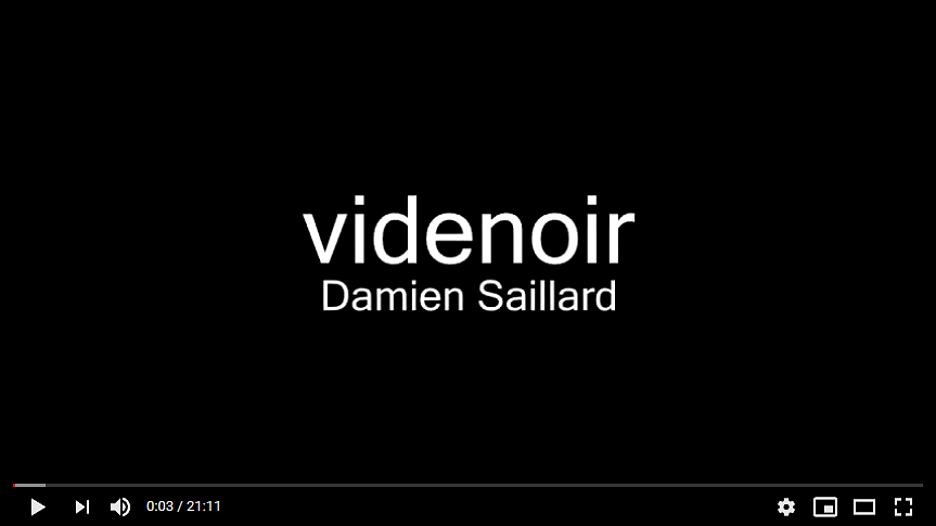 Performance avec Damien Saillard en video